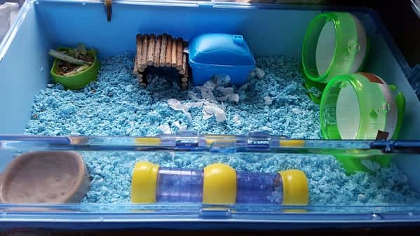 Cages Accessories For Dwarf Hamsters