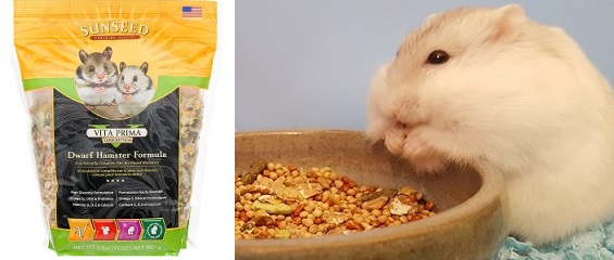 Russian Dwarf Hamster Food List